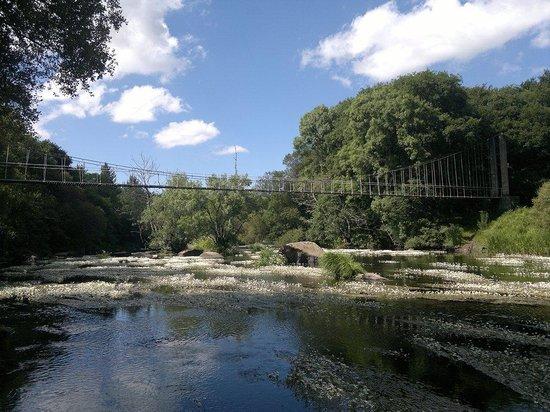Parque del Miño: ..vista del famoso puente colgante