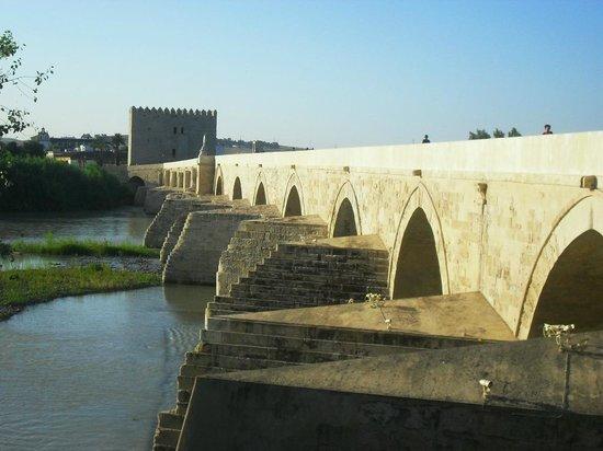 Pension El Portillo : Puente romano de Córdoba