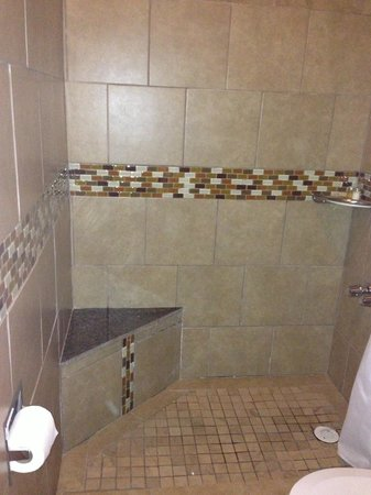 The Frenchmen Hotel: Newly renovated shower with mosaic finish