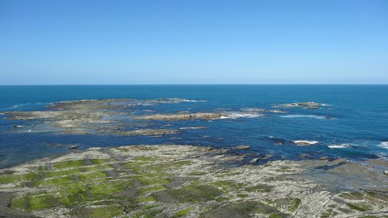 Kaikoura Peninsula Walkway: View from the top