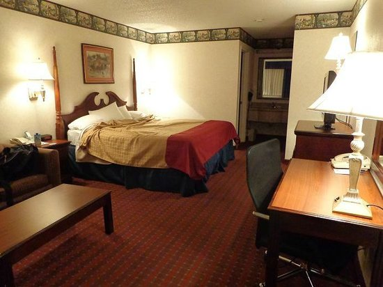 BEST WESTERN Irving Inn & Suites at DFW Airport: Old decor, but comfortable enough for the price and clean