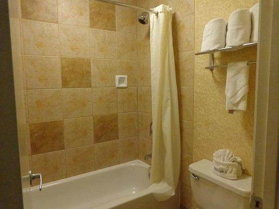 BEST WESTERN Irving Inn & Suites at DFW Airport: Ensuite Bathroom clean