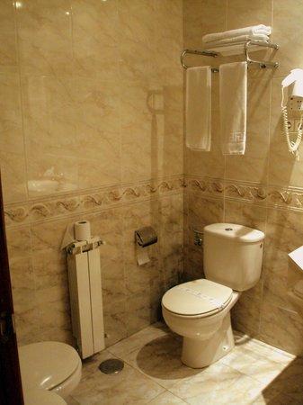 Hotel Roma Aurea: Baño de habitación doble.