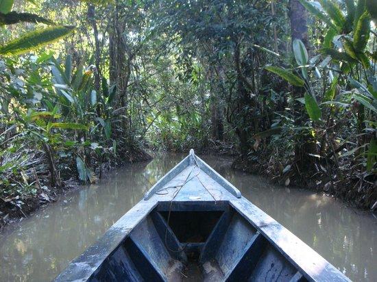 Mejia Lodge: Excursion