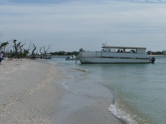 Captiva Cruises: Cayo Costa