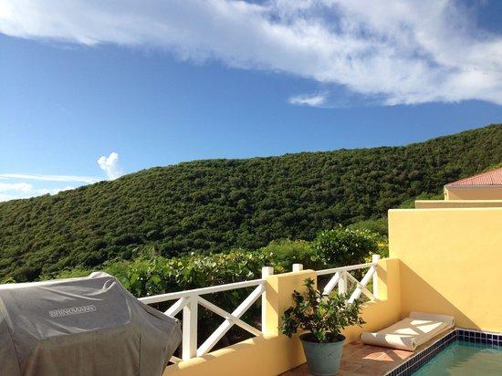 Villa Madeleine Resort Condominium : View of surrounding hills