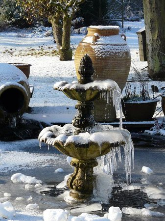Stanton Manor Hotel: Fountain