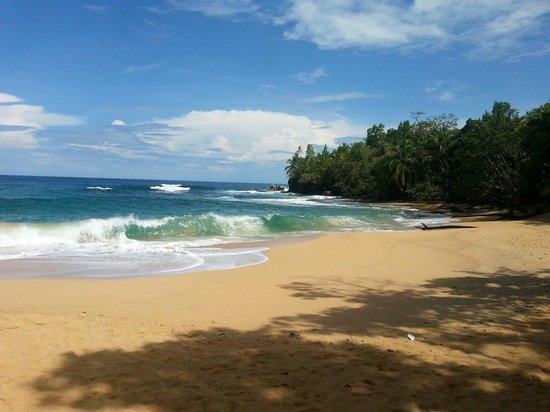 Los Tres Pisos: Bluff Beach, Bocas del Toro