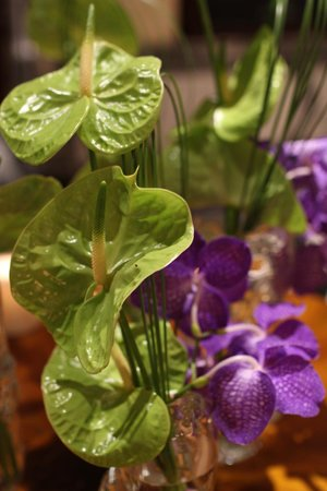 The Westin Europa & Regina, Venice: Orchids as well