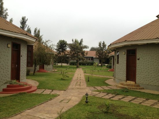 Arusha Planet Lodge : View of the huts