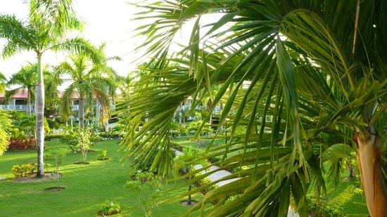 Grand Bahia Principe La Romana : View from the room