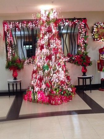 Fairfield Inn & Suites Elkin Jonesville : one of the trees in the lobby