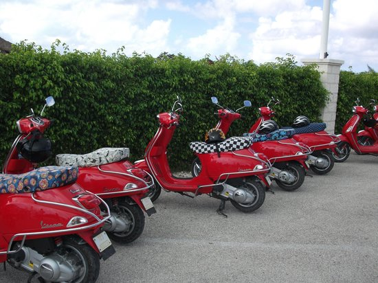 Paradise Scooters Vespa Rentals And Tours Turks And Caicos