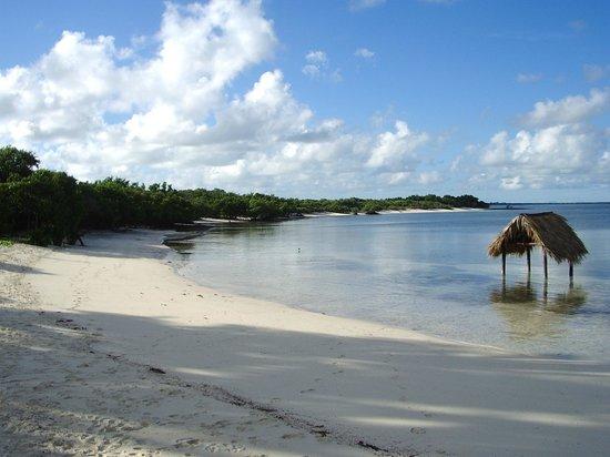 Melia Buenavista: plage coté ouest