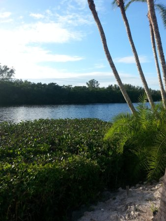 Siesta Key Bungalows: The lagoon