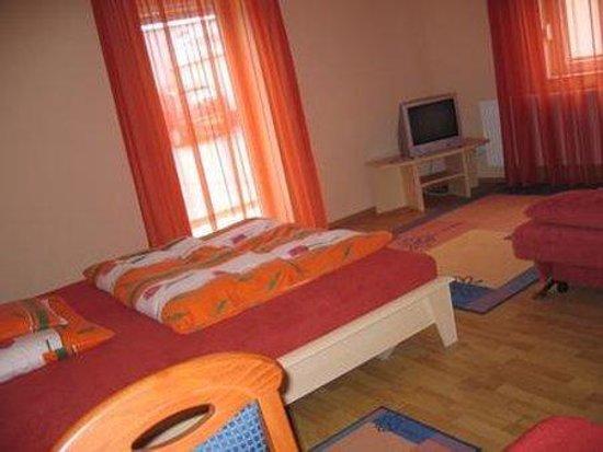 Kaiser Panzio Hotel: Guest Room