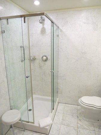 The Merrion Hotel: Shower- Room 1