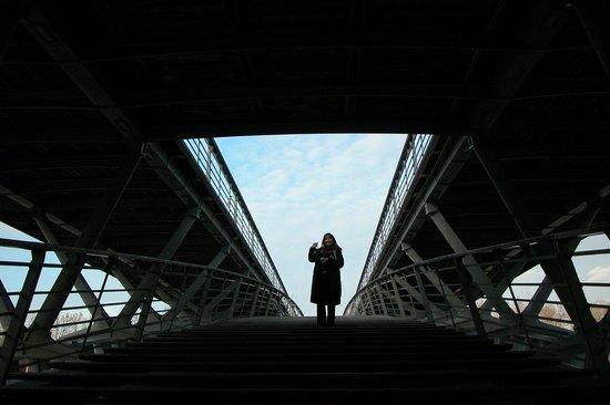 Paris Trip : Puentes y mas puentes en uno...