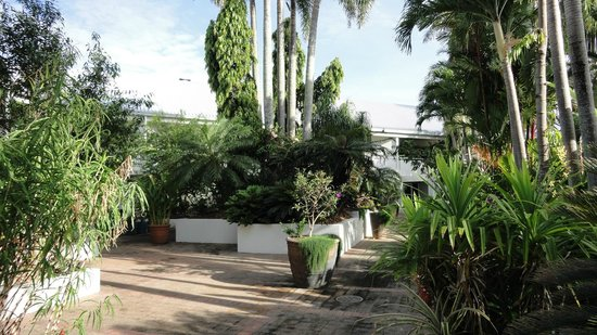 Shangri-La Hotel, The Marina, Cairns: Gardens by the Pool