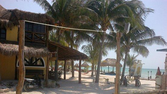 Holbox Adventure: PALMERAS Y HAMACAS PARAGUAYAS QUE INVITAN AL DESCANSO