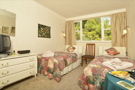 Grandvue Bed & Breakfast : Twin room upstairs