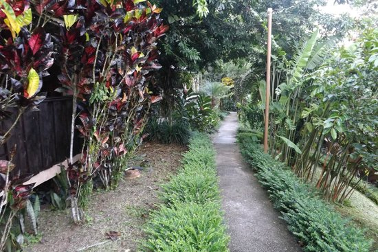 Hotel Kokoro Arenal: walk way to room