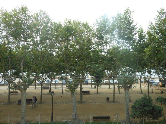 ALEGRIA Espanya: Вид с балкона 2 этажа