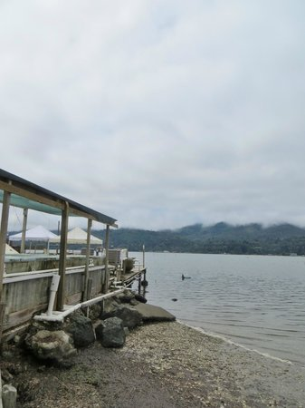 Tomales Bay Oyster Co. : Tomales Bay