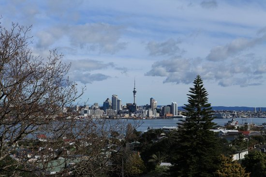 Fullers 360 Discovery Cruises : Auckland from Davenport