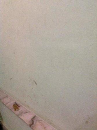 Saraswati ( Pure Vegetarian ): stained walls