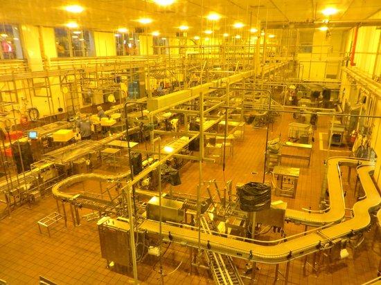 Tillamook Cheese Factory: Tillamook Factory