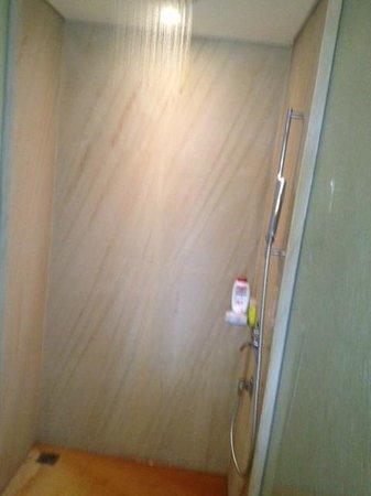 Hyatt Regency Chennai: red water from shower