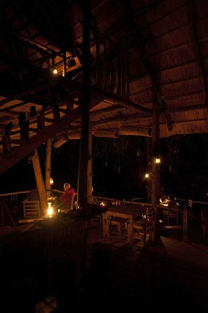 Bua River Lodge: diner while a male elephant passes in the river