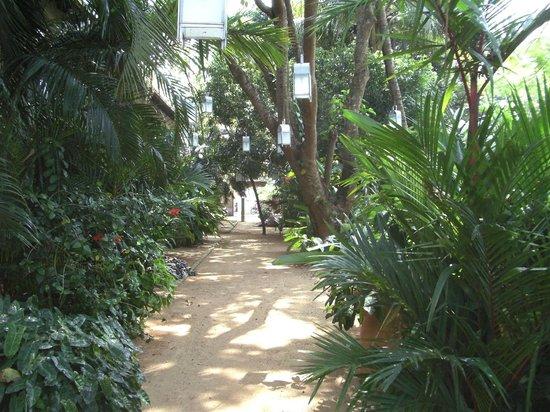 Fort House Restaurant: Le jardin vers le restaurant
