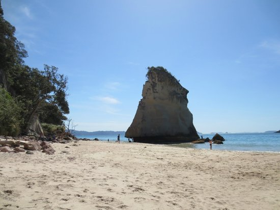 Cathedral Cove Walk: beach