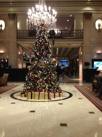 The Roosevelt Hotel: Lobby, This Hotel is very large but not intimidating