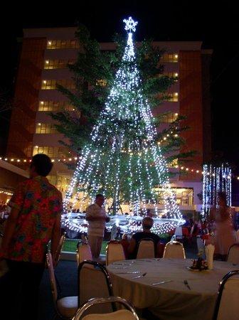 Prima Villa Hotel: Новогодний ужин