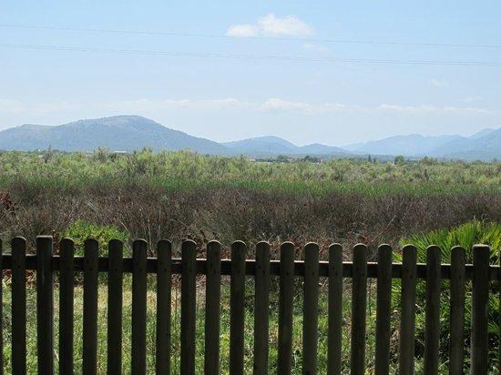 PortBlue Club Pollentia Resort & Spa : Vista desde hotel a Albufereta