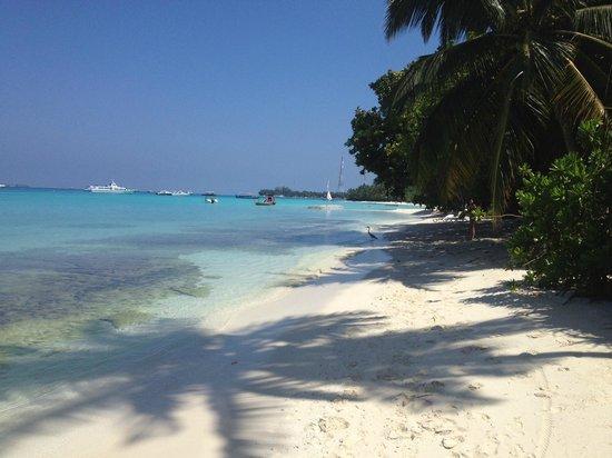 Kuramathi Island Resort: Strand und Meer vor der Villa