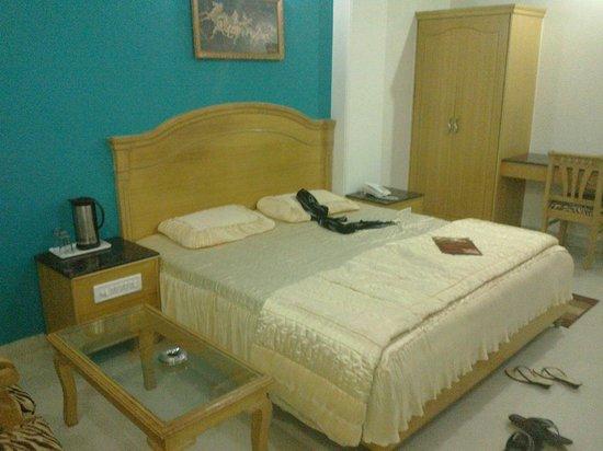 Hotel Maharaja Residency : The first floor room