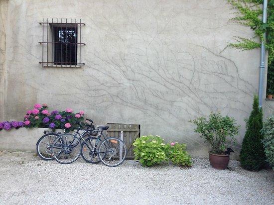 La Bastide des Anges : Во дворе