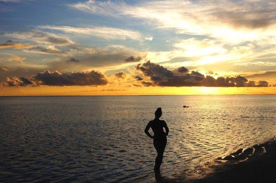 Holiday Island Resort & Spa: Заказ за 2 минуты