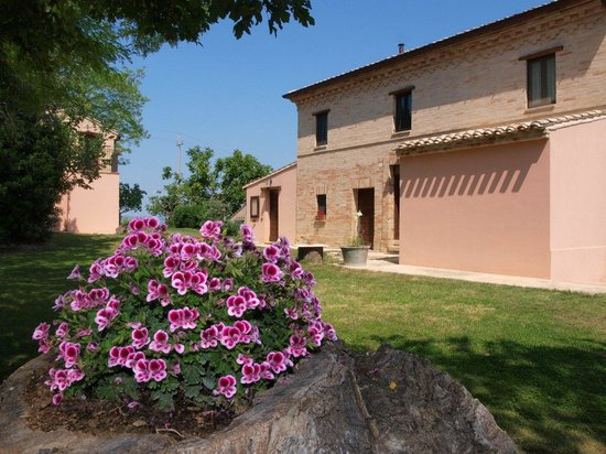 "Agrotourism ""At The Court of Carolina"": Agriturismo nelle Marche - esterno"