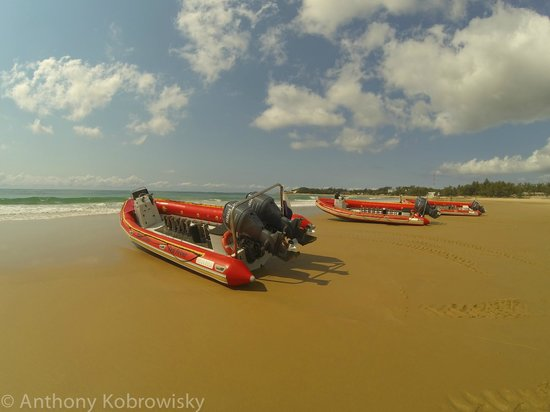 Tofo, Mozambique: Lined up and ready to go
