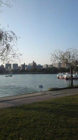 Ohori Park: 池がやはりきれいで癒されますね