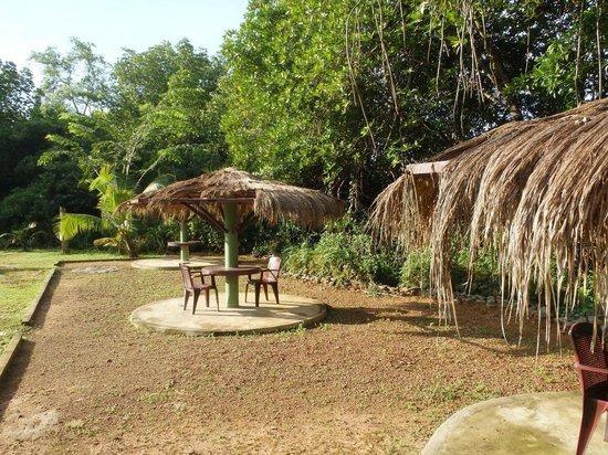 Mangrove Villa: Место для отдыха