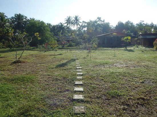 Mangrove Villa: Дорожка на территории отеля