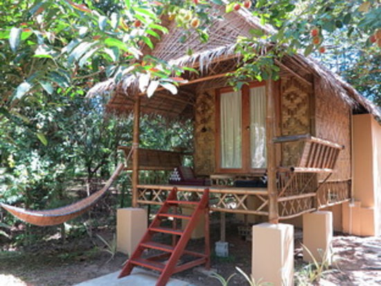 Khao sok national park surat thani alles wat u moet for Small house design thailand