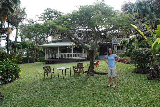 Windward Garden B&B: Tropical garden