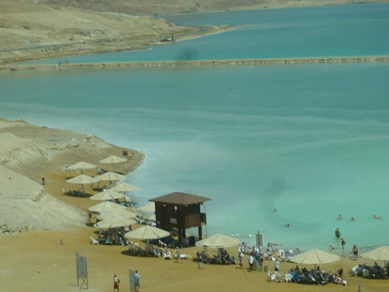 David Dead Sea Resort & Spa : Пляж отеля